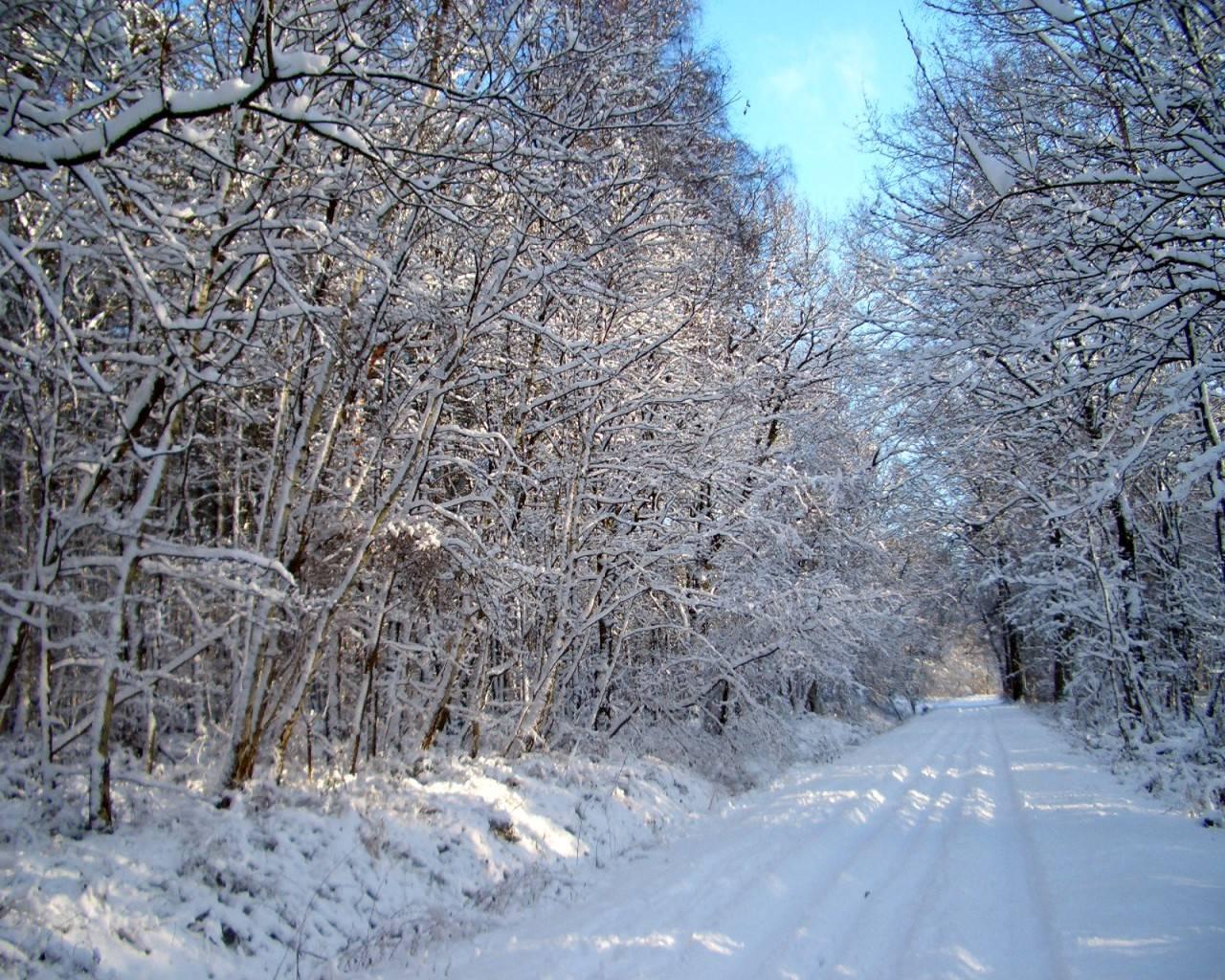 winterbilder gratis